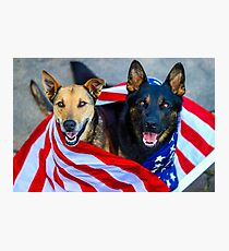 Patriotic Pups Photographic Print