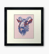 Rock Goat Framed Print