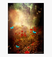 Spring is heading North... Photographic Print