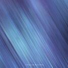 Sweet Violet Rain by Stephanie Rachel Seely