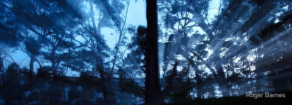 Dusk Silhouette by Roger Barnes