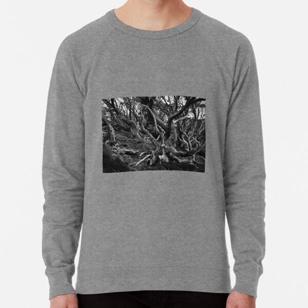 Snow Gums Mono Lightweight Sweatshirt