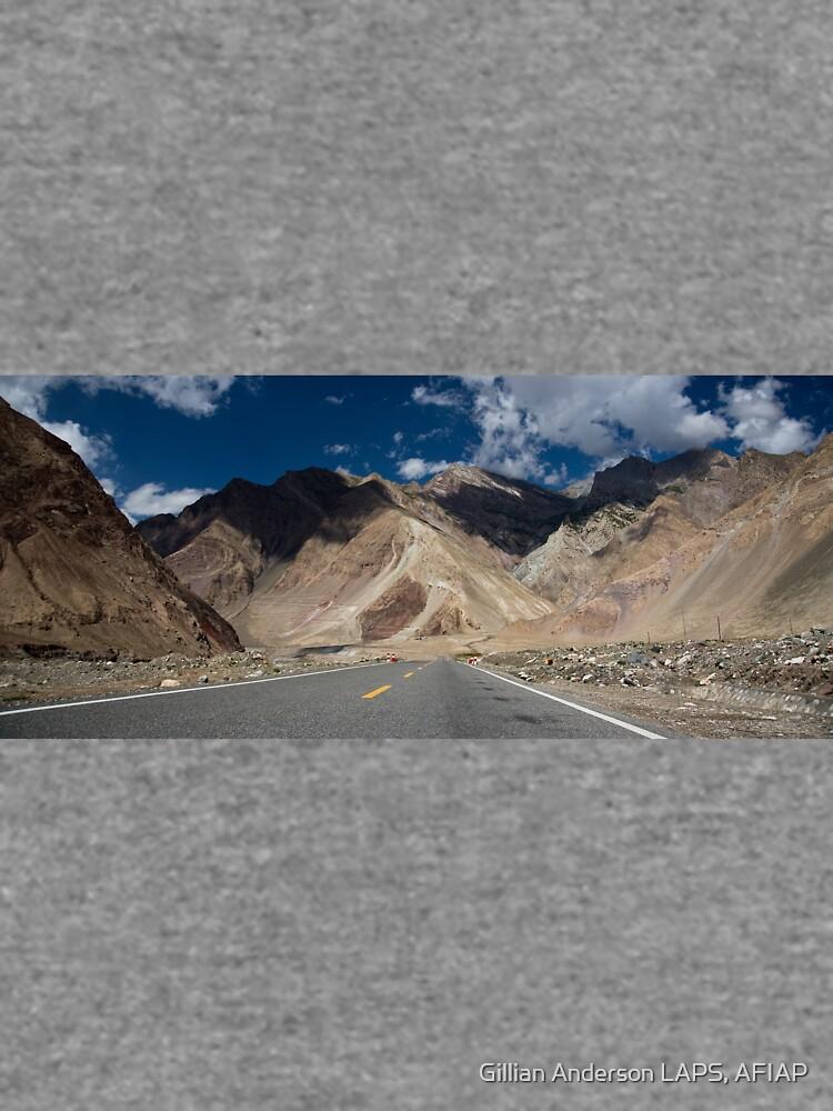 Karakoram Highway by Scully