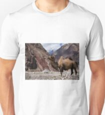 Camel on the Karakoram Highway T-Shirt