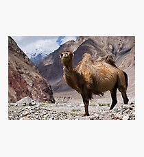 Gateway to the Karakoram Highway Photographic Print
