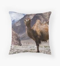 Gateway to the Karakoram Highway Throw Pillow