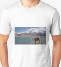 Phone coverage at Lake Kara Kul T-Shirt
