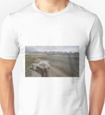 Camel at Lake Kara Kul T-Shirt