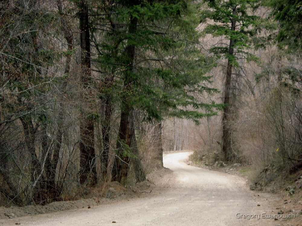 Country Roads by Gregory Ewanowich
