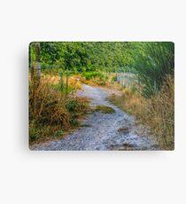 Follow The Gravel Path Metal Print