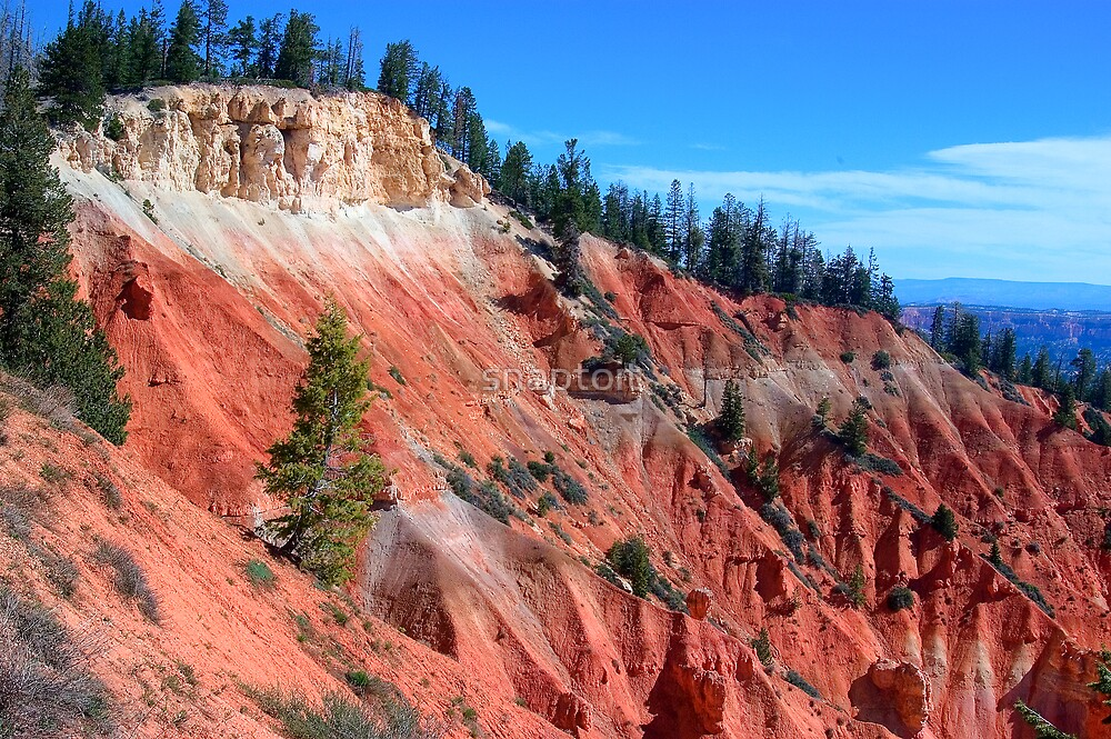 Bryce Canyon by snaptoit