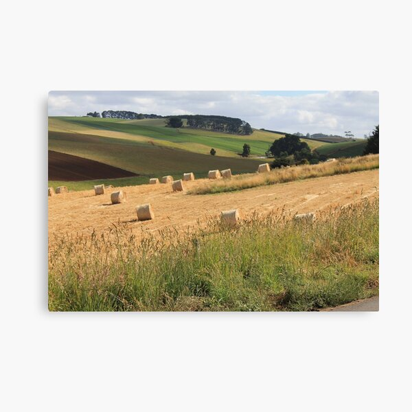 Hay Bales on the Hill Canvas Print