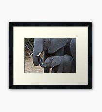 Love & Trust - Mother & Baby African Elephants  Framed Print