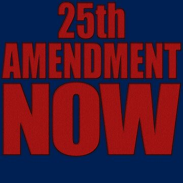 25th AMENDMENT NOW by Paparaw