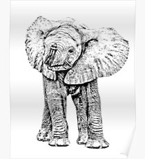 Cute Baby Elephant | African Wildlife Poster
