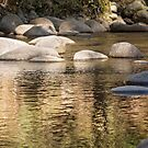 Ripples & Rocks by Linda Lees