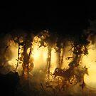 Rock forest by twa5150