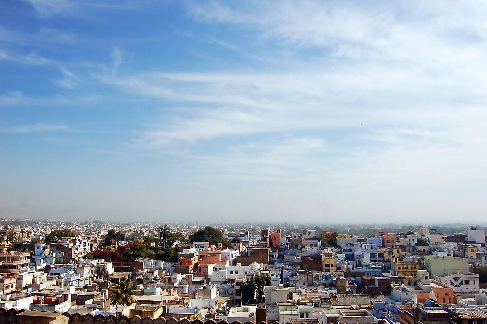 Udaipur Skyline by Desmond  Wilson