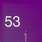 Fifty Three by MiniMumma