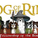 The Fellowship of the Borders by DoggyGraphics