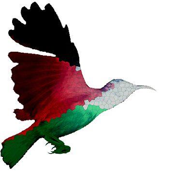 Palestine Sunbird  by destructopanda