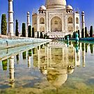 Taj Reflection by Barbara  Brown