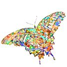 Colorfly II by mrthink
