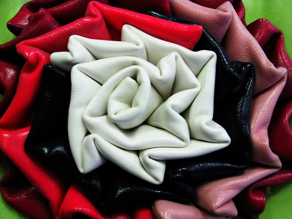 Leather Rose by TLCGraphics