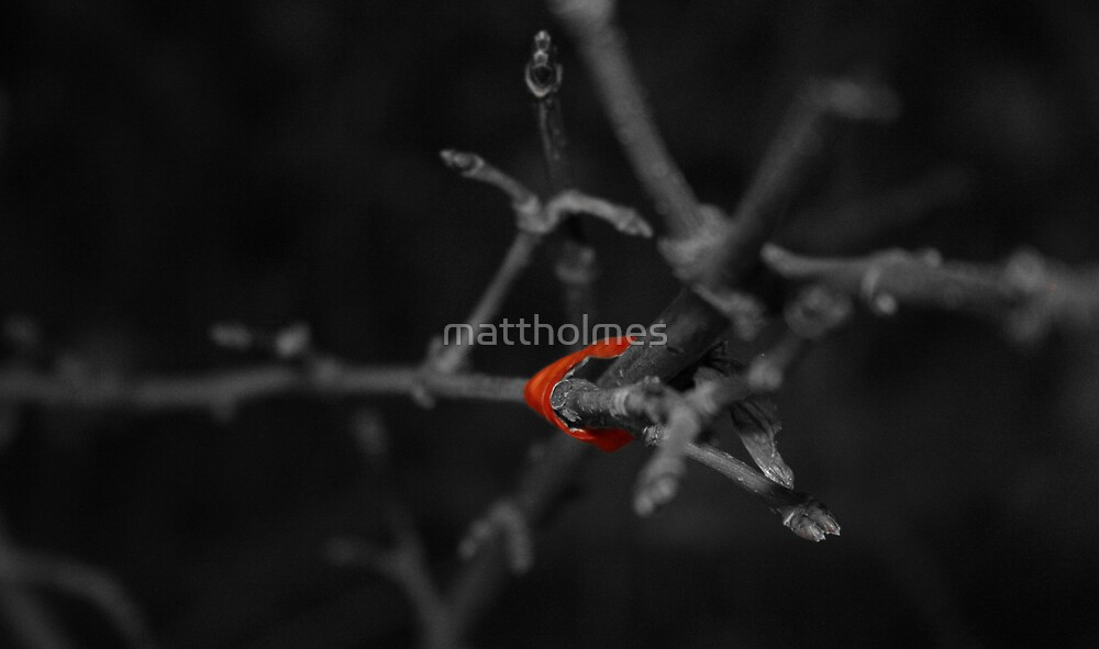 Red Tape by mattholmes