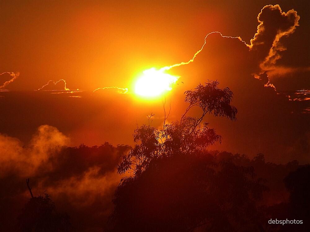 Golden Morning 1. by debsphotos