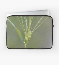 Ovate goatgrass (Aegilops geniculata) Laptop Sleeve