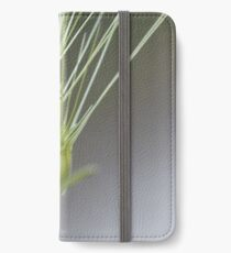 Ovate goatgrass (Aegilops geniculata) iPhone Wallet/Case/Skin