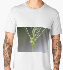 Ovate goatgrass (Aegilops geniculata) Men's Premium T-Shirt