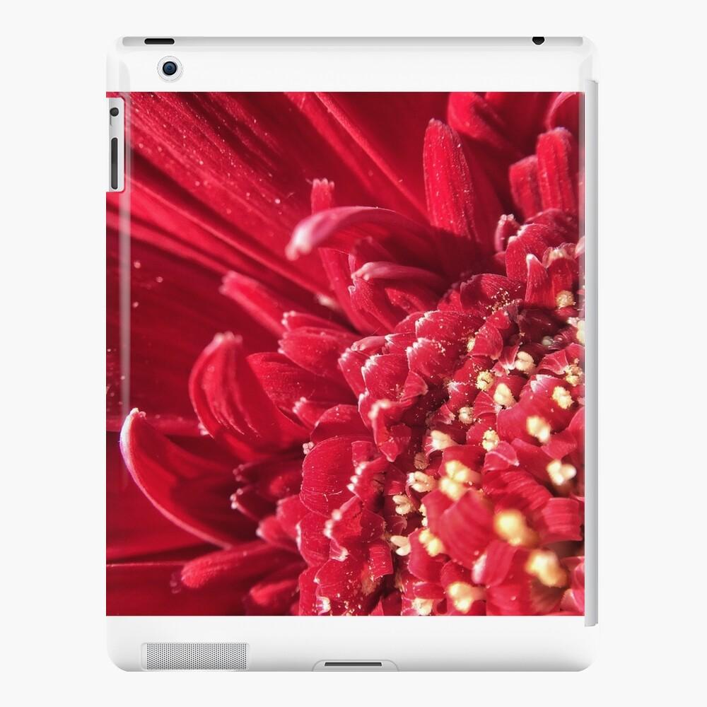 rojo Funda y vinilo para iPad