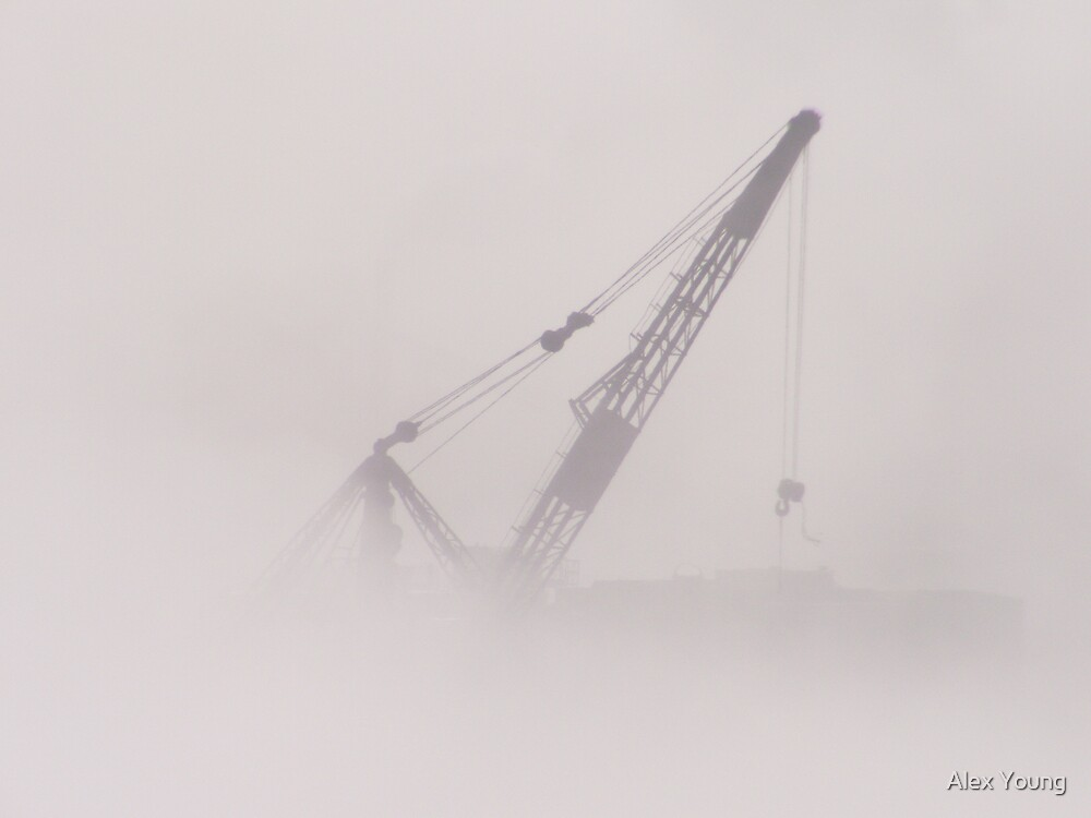 Craning In The Fog by Alex Young