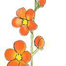 orange Wildblume von lesliemball