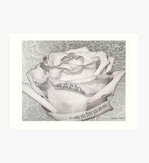 White Rose With Quote Tucked In Petals Art Print