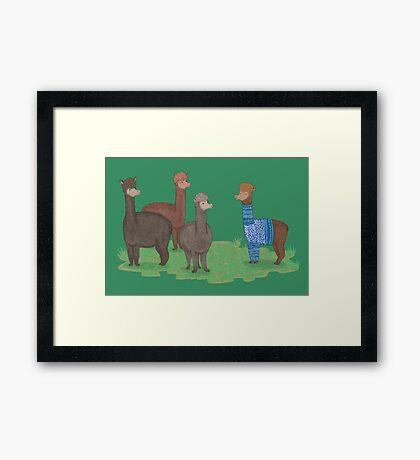 SHOW OFF - summer Framed Print