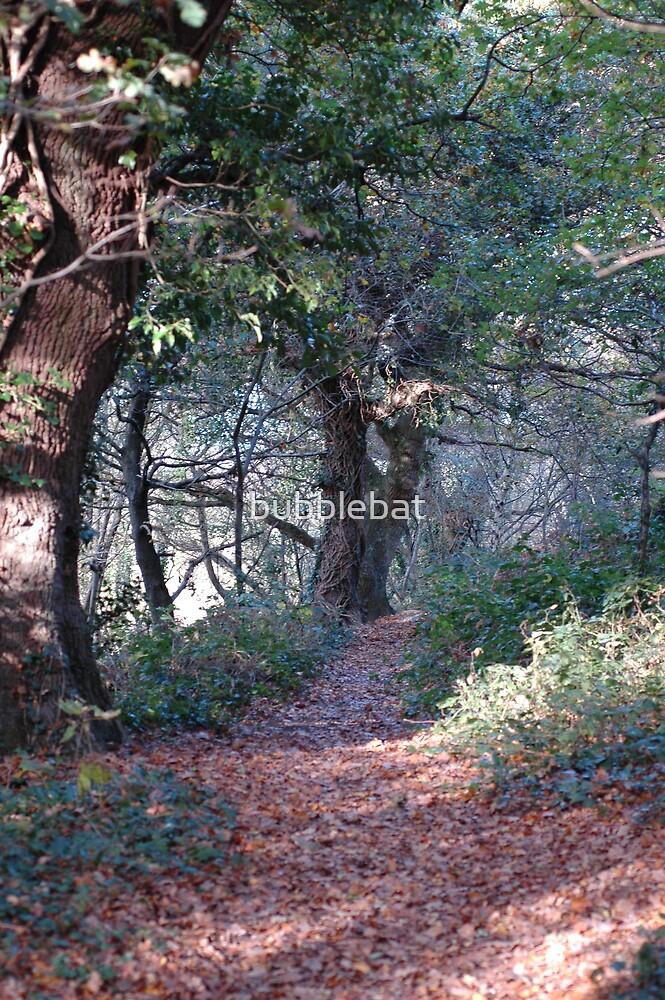 Woodland Trail by bubblebat