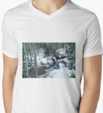 Snow Scene T-Shirt