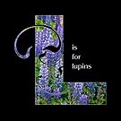 L is for lupins by Lenore Locken
