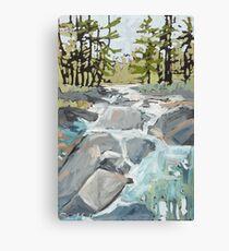 Algonquin rocks Canvas Print