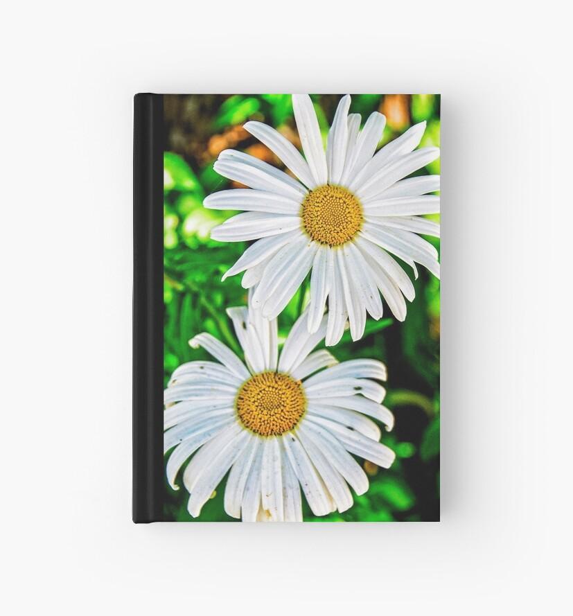 daisy, daisy by Lenore Locken