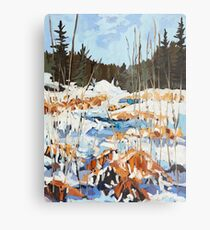 Winter in Gatineau Park Metal Print