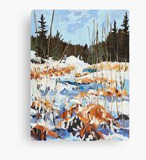 Winter in Gatineau Park Canvas Print