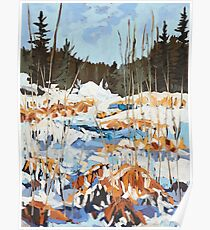 Winter in Gatineau Park Poster