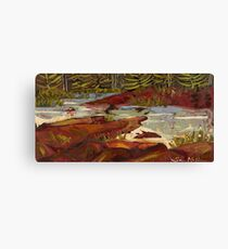 Red Rocks in Algonquin Park Canvas Print