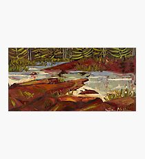Red Rocks in Algonquin Park Photographic Print
