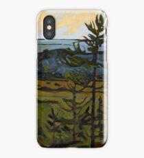 Lookout at Sunset iPhone Case