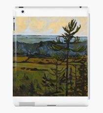 Lookout at Sunset iPad Case/Skin